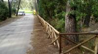 L´Azienda Multiservizi segnala gli ultimi lavori di manutenzione svolti nel territorio di Punta Ala: importante opera di potatura piante in Piazzale Giove, e installazione staccionate lungo Via del Pozzino e […]